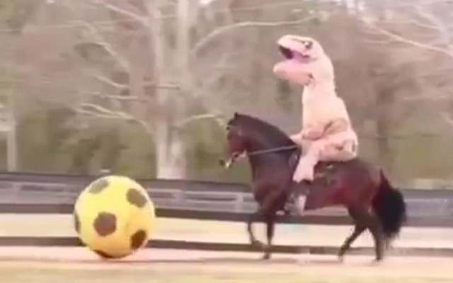 Former Newcastle star teaches horse how to play football…dressed like a dinosaur [Video]