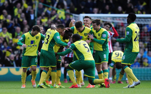 Norwich vs Newcastle – Premier League preview and team news
