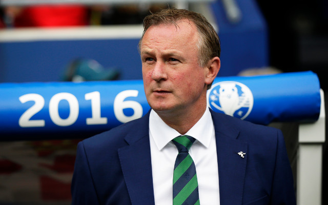 Miracle manager Michael O'Neill masterminds historic Northern Ireland victory